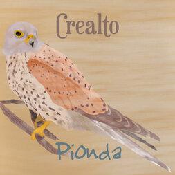 plp_product_/wine/pionda-crealto