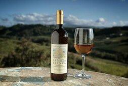 plp_product_/wine/cascina-degli-ulivi-la-merla-bianca-2007