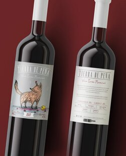 plp_product_/wine/tierra-de-pena-coyote-2017