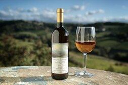 plp_product_/wine/cascina-degli-ulivi-a-demua-2016
