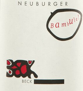 plp_product_/wine/weingut-judith-beck-neuburger-bambule-2019
