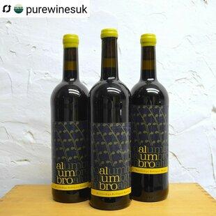 plp_product_/wine/alumbro-tinto