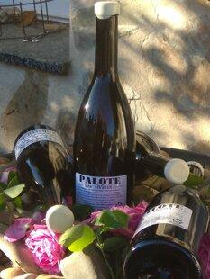 plp_product_/wine/alumbro-palote