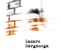 plp_product_/wine/masiero-lazaro-2017