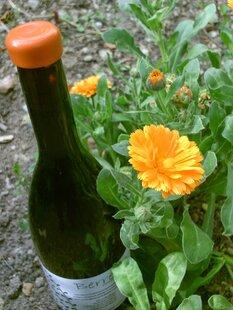 plp_product_/wine/berretes-orange-wine-2018