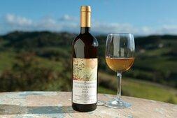 plp_product_/wine/cascina-degli-ulivi-montemarino-2016