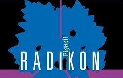 plp_product_/wine/radikon-pignoli-2004