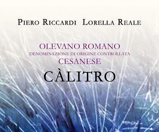 plp_product_/wine/cantine-riccardi-reale-calitro-2016